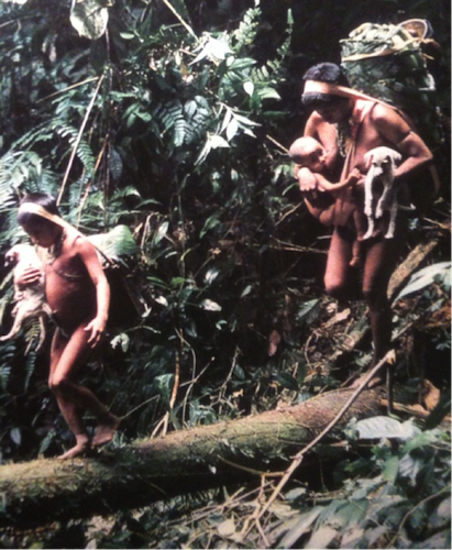 """In hunter-gatherer tribes, everyone had to be strong — men, women, and children alike. Here we see walking, balancing, and carrying — all at once. It doesn't get any more """"functional"""" than this."""